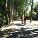 A vélo le long de la Loire